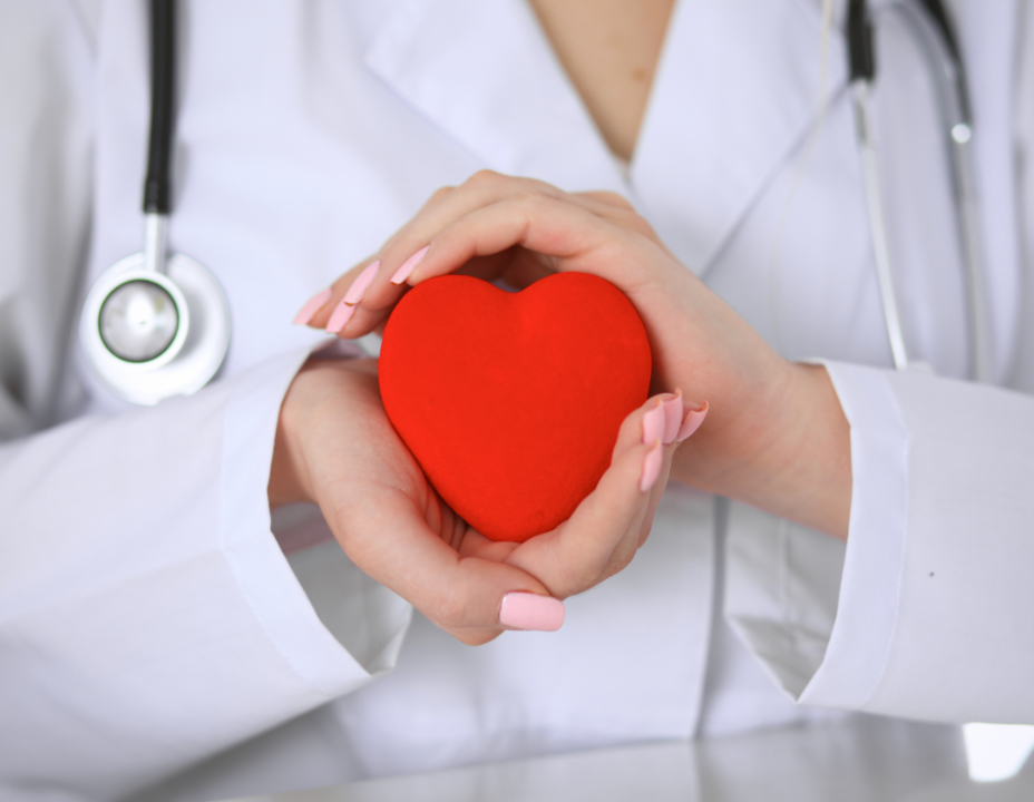 medical professional holding a red heart shape
